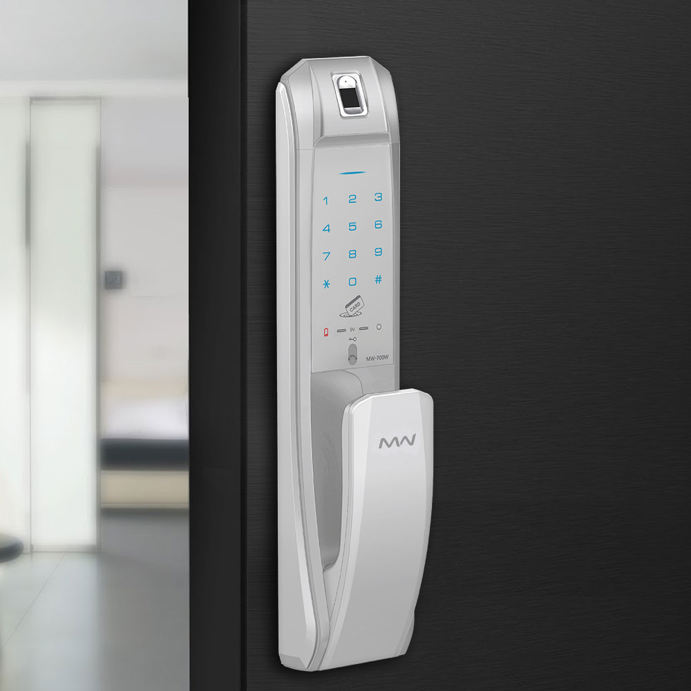 Bluetooth Smart Entrance Lock (Push/Pull Handle)